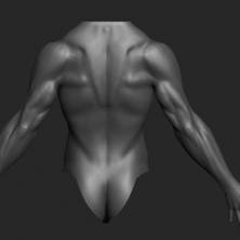 Male Posture