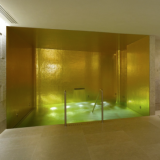 The Gold Walled Vitality Pool
