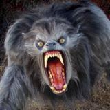 Werewolf ancestry