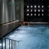 Mandarin Hotel Plunge Pool